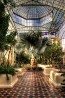 Inside Palmhouse HDR by shadowall