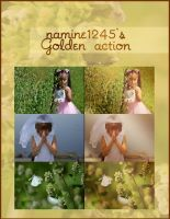 Golden - Free Photoshop Action by namine1245