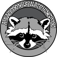 A Raccoon is Watching by ZNECO