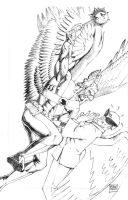 Hawkman vs. Harvey Birdman by MikeDimayuga
