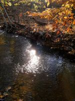Light on the Water by stitch52481
