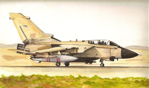 British fighter jet gulf war by keef-kdni