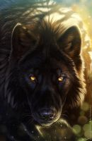 Intent by balaa