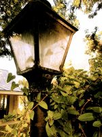 Old Fashioned Lamplight by XxMoonlit-UchihaxX