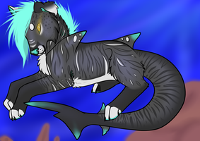 Shark Mutt Design V2 by VestraSaur