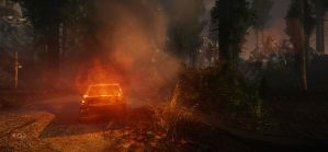 Cryengine - Forest Scene 6 by TRAEMORE