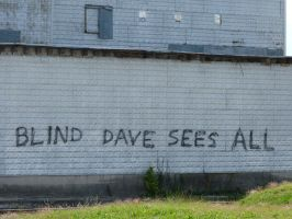 Blind Dave Sees All by RonTheTurtleman