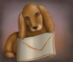 A letter to you... by Filiana