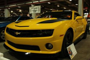Bumblebee by KyleAndTheClassics