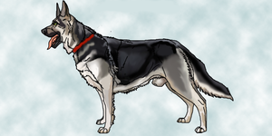 East European Shepherd Breed Standard (VEO) by lighteningfox