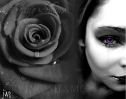 It's a crying shame by noizkrew