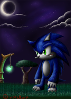 Sonic The Werehog by Melody-Chaos