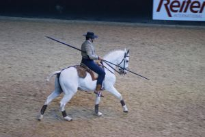 Grey Lusitano canter by EndingStories