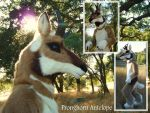 Pronghorn Antelope Full Costume by LilleahWest