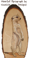 Meerkat Pyrograph (Woodburning) by snazzie-designz