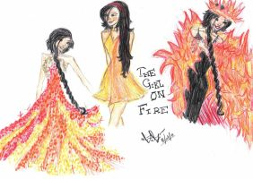The Girl On Fire by MinaxSnitch