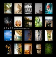 Postcard Collection Book by Renez