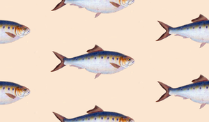 Fish pattern by Huku9H1F