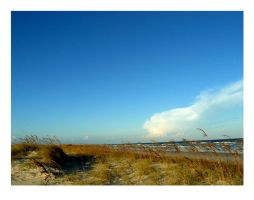 St. George Island6 by sees2moons
