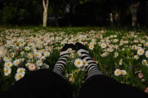 Stripes Feet and Flowers by OOOri