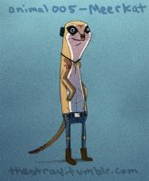 Daily Critter 005 of 365 Meerkat by jeff-aka-stray