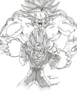 DBM Vegeto VS Broly by Elyas11