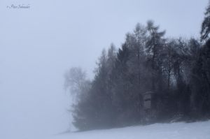 Cold fog. by Phototubby