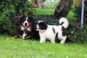 Clara and Zoey by witchi-photos