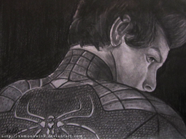 The Amazing Spiderman by TheMoonfall
