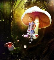 Alice in Wonderland by barrena