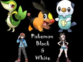 Pokemon Black and White by imuffinator