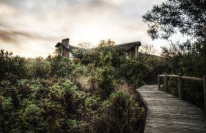 HDR test by nazmoza
