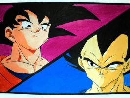 6th Match, Goku Versus Vegeta! by EckoSlime