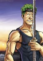 swordman - zoro - color by Hiei-Ishida