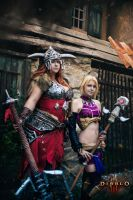 Diablo 3 cosplay Barbarian and Enchantress Eirena by Jane-Po