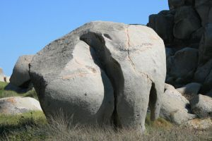 Rock Elephant by Milkyway84