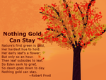 Nothing Gold Can Stay by zahuranecs