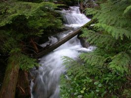 creek in mount index by crazytmac