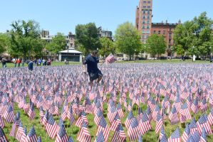 Memorial Day, Sea Of Flags 15 by Miss-Tbones