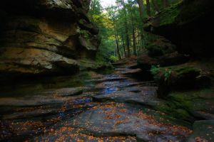 Canyon at Hocking Hill by steph9668