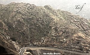 Natural in Taif by The-Golden-Princess