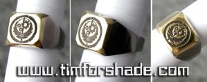 Brotherhood of Steel Ring Fallout ring by TimforShade
