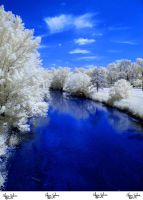 Infrared Stock - 2013 - 40 by ElaineSeleneStock
