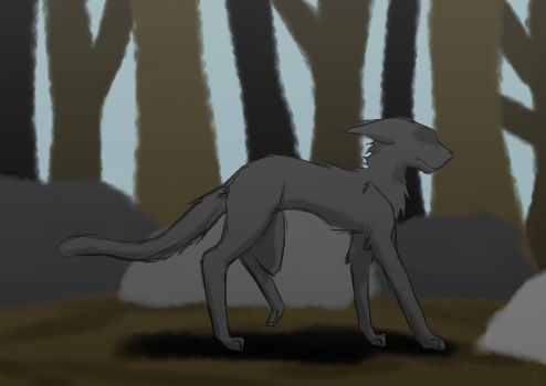 Redraw 2017 Hollyleaf by Morgana-Mikaelson