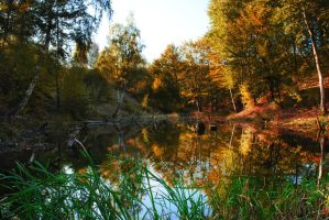 Warm waterscape in autumn by ioannnaa96