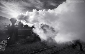 Steam train in Maramures 02 by adypetrisor