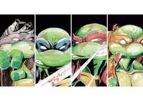 tmnt by camillo1988