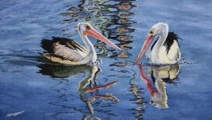 Two pelicans by fredasurgenor