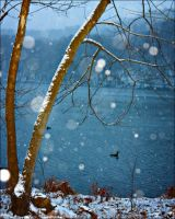 Winter-Blue Lake by pensive-painter