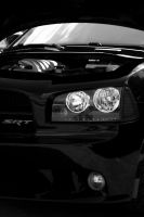 x - Dodge Charger SRT8 by TriinErg